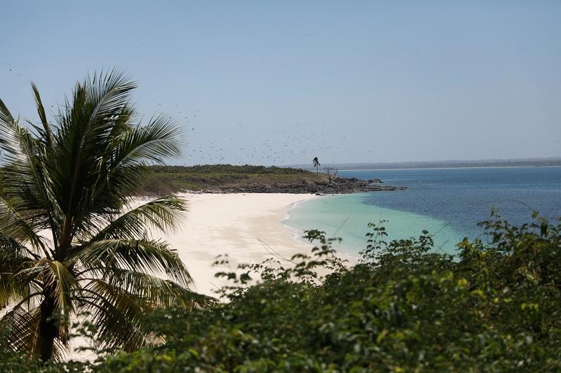 Isla Iguana 23
